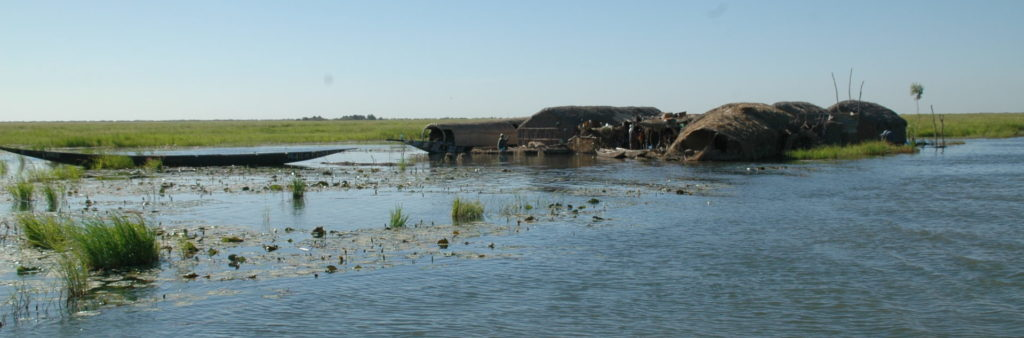 High flood in the Inner Niger Delta, Mali. Leo Zwarts, A&W